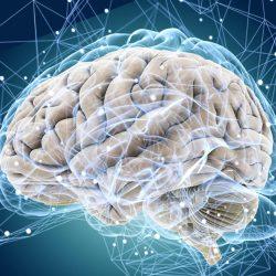 Почему мозг отказывается работать
